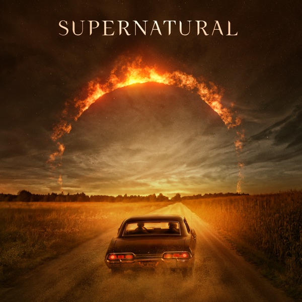 Сверхъестественное / Supernatural [S01-15] (2005-2020) HDRip, WEB-DLRip | Рен-ТВ, NewStudio & NovaFilm